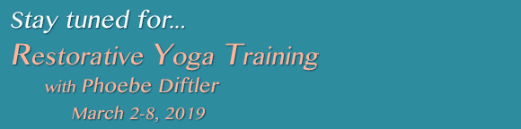 Restorative Yoga Training with Phoebe Diftler March 2-8